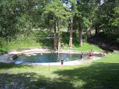 Convict Spring Swimming Suwannee River Rendezvous