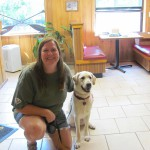 Yellow Lab Sitting with Person