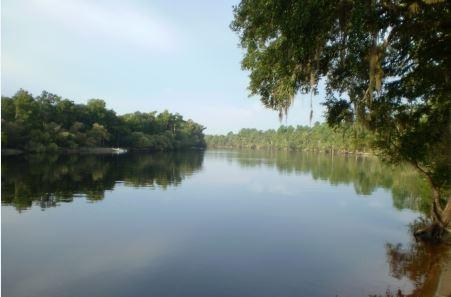 The Suwannee River