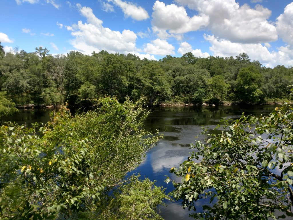 Outdoor View of Suwannee River