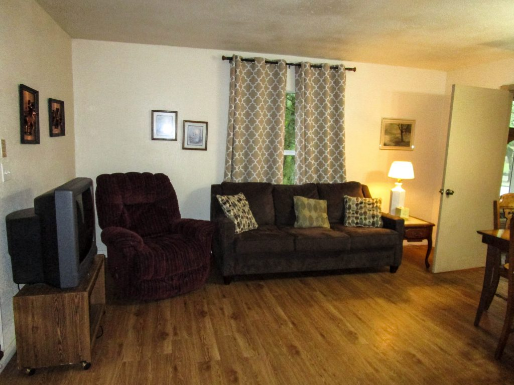 Couch, Recliner & TV in Lodge Room #4